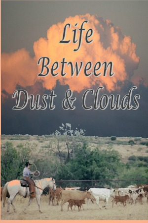 Life Between Dust and Clouds